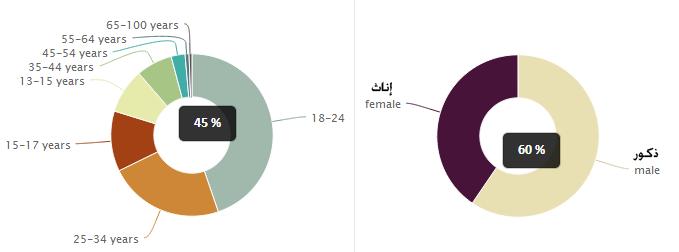 التوزيع حسب النوع والفئة العمرية