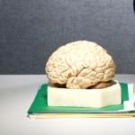 كيف تجد الطريق لطاقة الأفكار في أعماقك؟