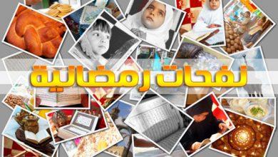 Photo of نفحات رمضانية في صور من غزة